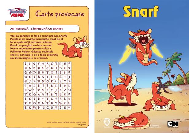 01_Provocare_Snarf
