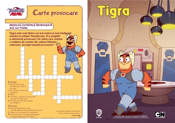 01_Provocare_Tygra